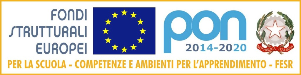 Logo PON FESR